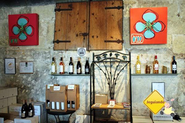 Mas Du Notaire, hospedagem e vinhos em Vauvert, França. Imagem: Janaína Calaça