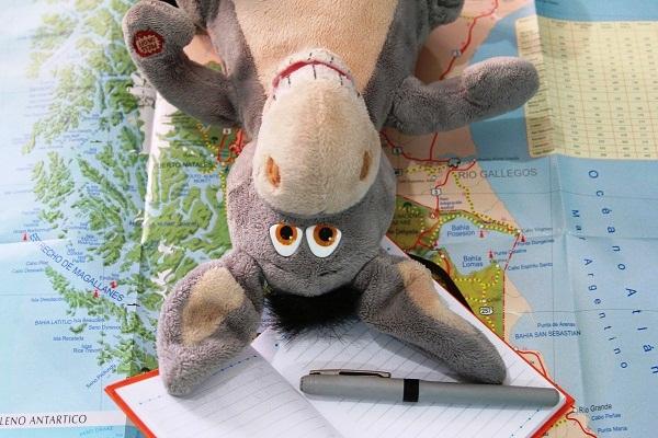 Jegueton planejando a viagem. Imagem: Janaína Calaça