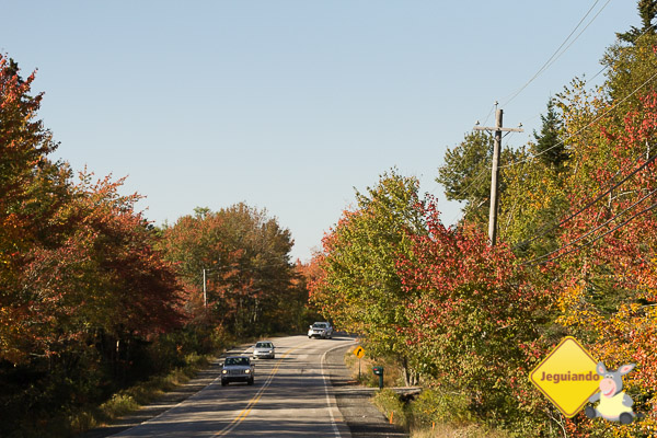 Na estrada, rumo a Peggy`s Cove. Halifax, Nova Scotia. Imagem: Erik Araújo