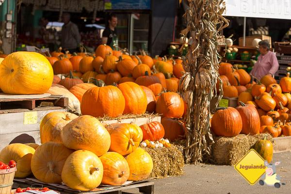 Abóboras de todos os tamanhos à espera do Halloween. Marché Jean-Talon, Montreal, Quebec. Imagem: Erik Araújo