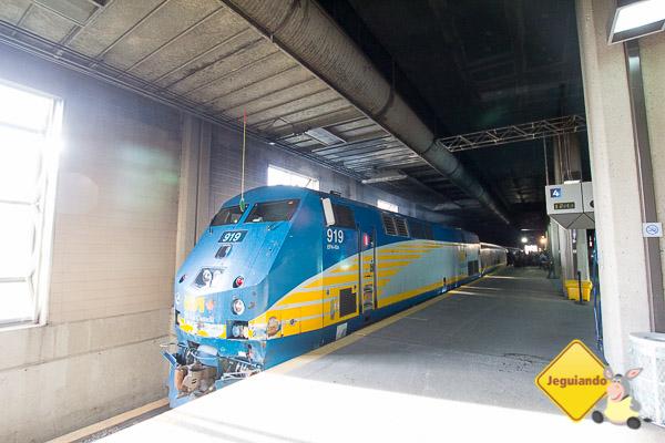 Trem The Corridor, da companhia Via Rail. Imagem: Erik Araújo