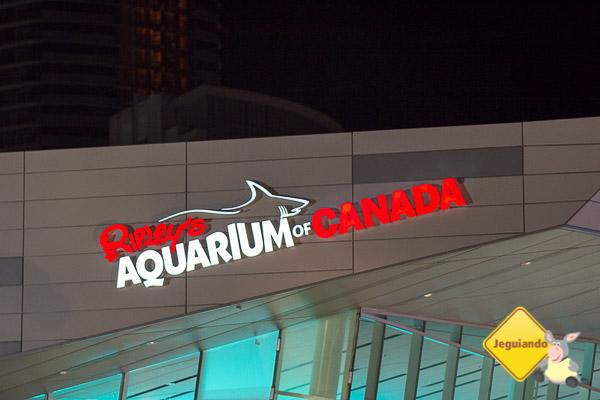 Ripley's Aquarium of Canada. Toronto, Ontário. Imagem: Erik Araújo