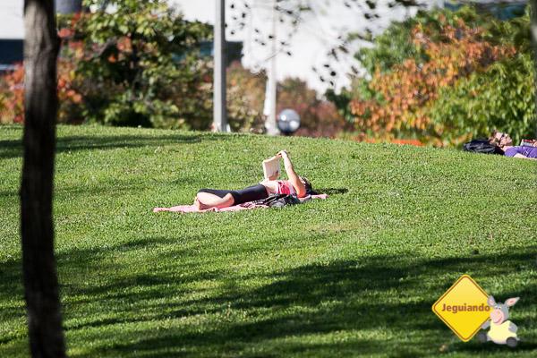 Relaxando no parque. Toronto, Ontário. Imagem: Erik Araújo