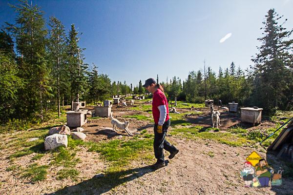 David Daley, nativo métis e musher. Imagem: Erik Araújo