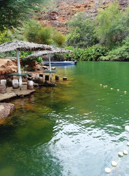 O verde-esmeralda das águas do Velho Chico. Imagem: Janaína Calaça