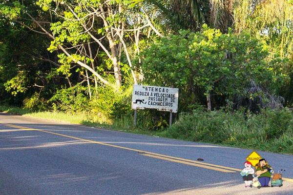 Placa na estrada entre Ilhéus e Itacaré. Bahia. Imagem: Erik Araújo