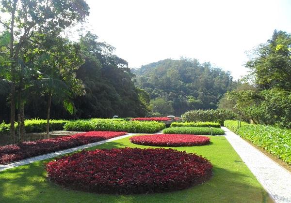 Jardim suspenso do Museu da Hering. Imagem: Lorena Grisi